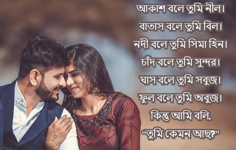 bengali love shayari for boyfriend