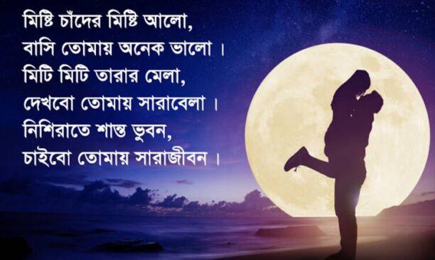 লাভ পিকচার | Love Picture New Bangla SMS